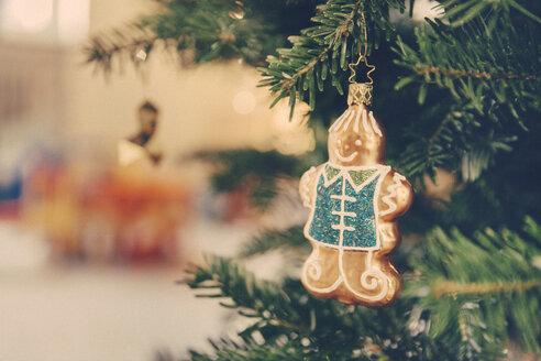 Germany, Bonn, Christmas decoration, gingerbread man on a tree - MFF000841