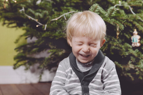 Laughing toddler under Christmas tree at home - MFF000840