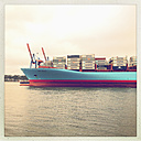 Container shipping line Maersk in Walter Hofer harbor, Hanseatic City of Hamburg, Germany - SE000465