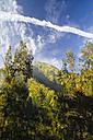 Indonesia, Java, landscape near Volcano Mount Bromo - KRP000262