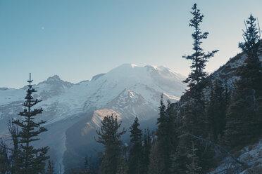 USA, Washington State, View over Mt Rainier National Park - MFF000860