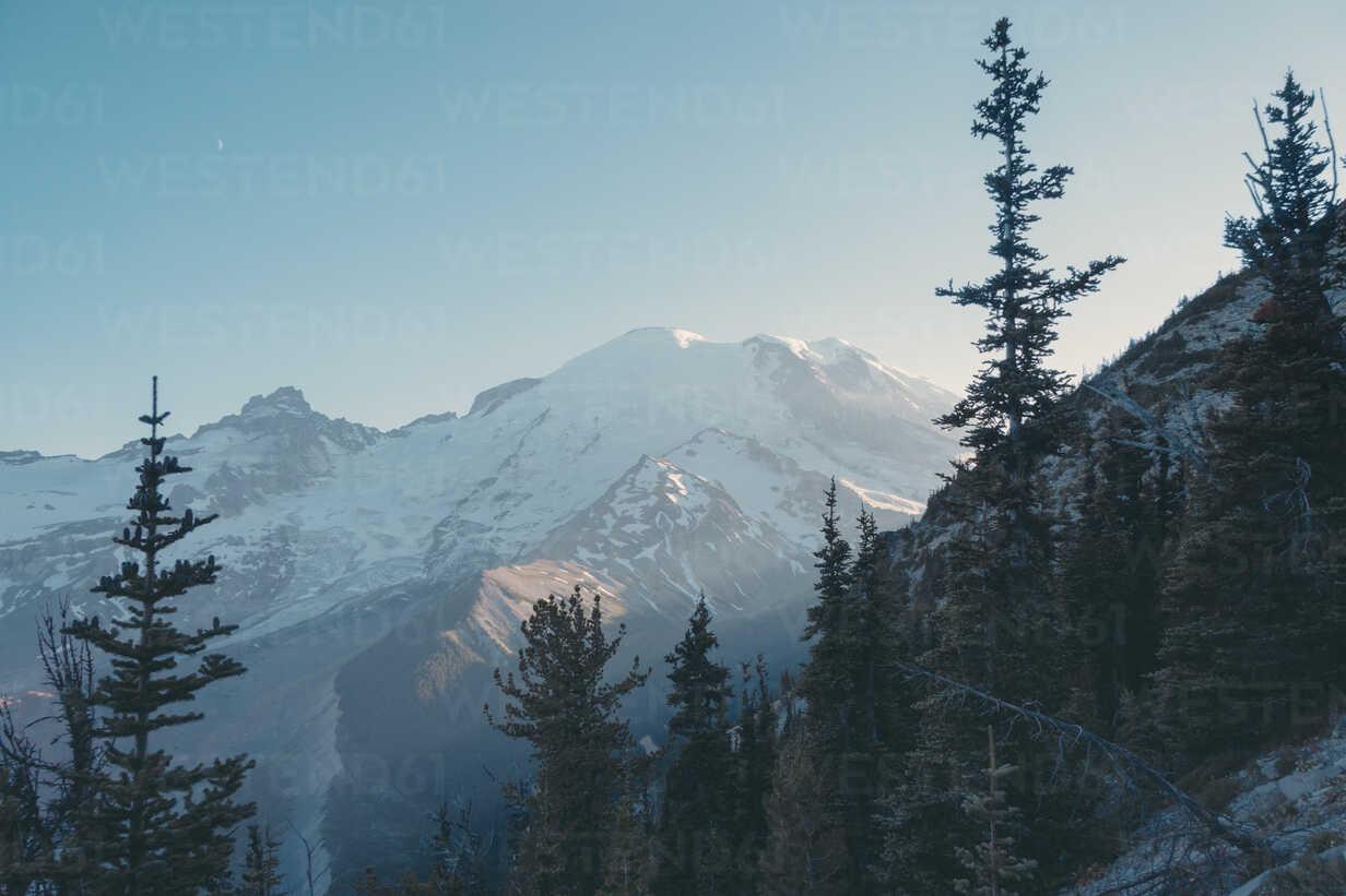 USA, Washington State, View over Mt Rainier National Park - MFF000860 - Mareen Fischinger/Westend61