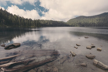 Canada, British Columbia, Lake in forest - MFF000865