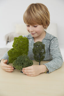 Germany, Boy sitting at table with tree models, environmental conservation - FSF000111