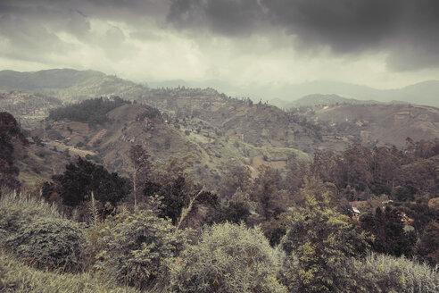 Sri Lanka, Uva, Ella, landscape - DRF000498