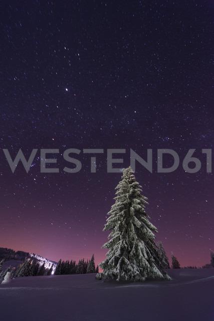 Germany, Baden-Wuerttemberg, Feldberg, winter landscape by night - PA000333