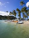 Caribbean, Saint Lucia, Marigot Bay, Beach with boats - AMF001795