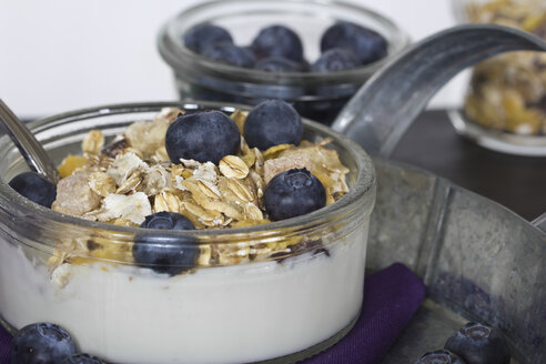 Breakfast bowl of cereals with blueberry and yogurt - YFF000024