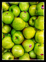 Granny Smith apples (Malus), Supermarket, Germany - CS020828