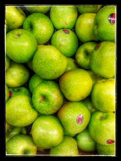 Granny Smith apples (Malus), Supermarket, Germany - CS020828