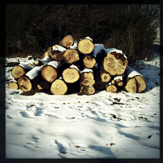 Cut wood on pile in the snow. Brandenburg, Germany. - ZMF000207