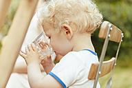 Toddler drinking in a garden - MFF000873