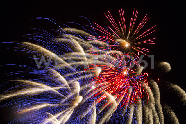 Fireworks in the night sky - EGF000007