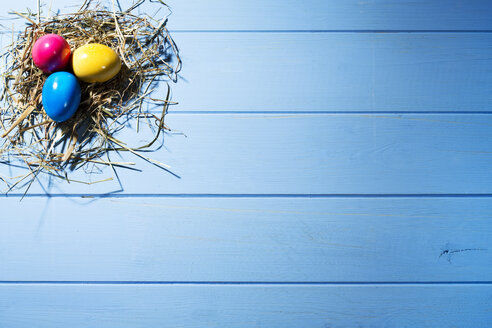 Easter nest with three coloured Easter eggs on blue ground - MAEF007771