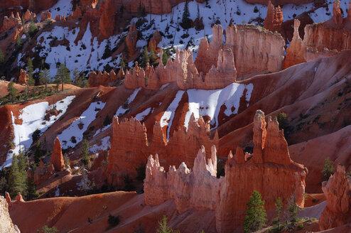 USA, Utah, Bryce Canyon National Park, view to hoodoos at Bryce Canyon - RUEF001175