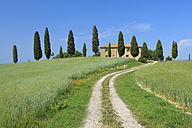 Italy, Tuscany, Siena Province, Val d'Orcia, Pienza, view to dirt road through fields with farmhouse and cypress trees - RUEF001169