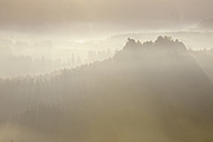 Germany, Saxony, National Park Saxon Switzerland, Elbe Sandstone Mountains, view from Bastei area to forest at sunrise - RUEF001203