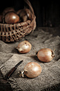 Onions and knife, basket with onions - SBDF000589