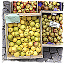Germany, Baden-Wuerttemberg, Tuebingen, weekly market, different apple varieties - LVF000633