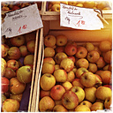 Germany, Baden-Wuerttemberg, Tuebingen, weekly market, apples - LVF000638