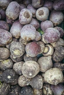 Germany, Baden-Wuerttemberg, Freiburg, vegetable market, Beetroots (Beta vulgaris) - ELF000847