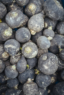 Germany, Baden-Wuerttemberg, Freiburg, vegetable market, Beetroots (Beta vulgaris) - ELF000850
