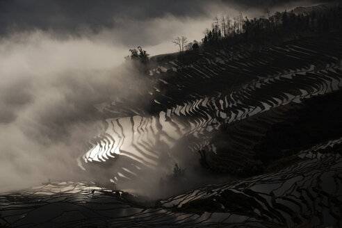 China, Yunnan, Yuanyang, Overcast rice terraces - JBAF000091