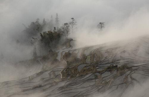 China, Yunnan, Yuanyang, Overcast rice terraces - JBA000094