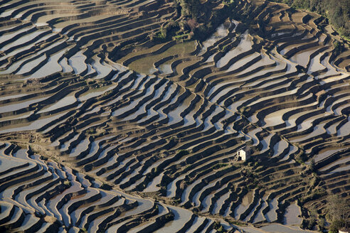 China, Yunnan, Yuanyang, House in rice terraces - JBAF000100