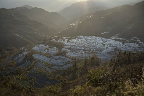 China, Yunnan, Yuanyang, Rice terraces - JBA000103