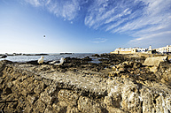 Morocco, Essaouira, Kasbah, seagulls in front of town - THAF000088