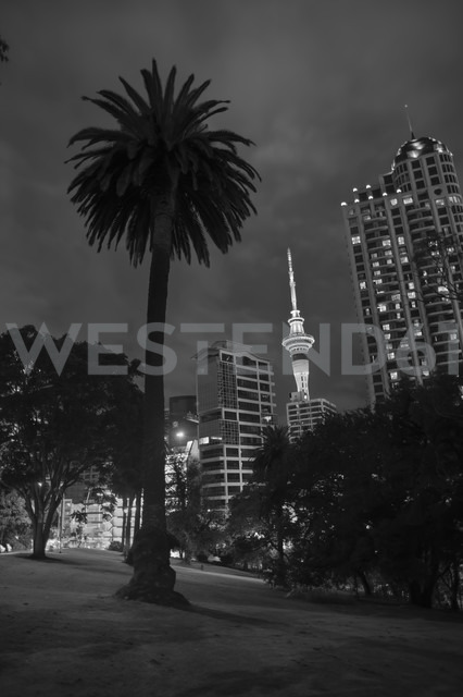 New Zealand, North Island, Auckland, Sky Tower with shadow of a palm tree - JB000059