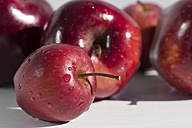 Red apples with waterdrops lying on white ground - YFF000039