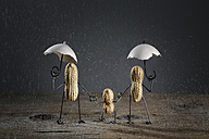 Three peanuts building family with one child in the rain (made of salt grains) - NIF000005