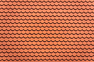 Roof tiles - EJWF000322