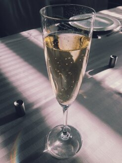 Glass of sparkling wine on a table in shaded sunlight - MEAF000161