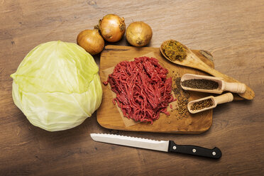 Ingredients for cabbage mincemeat stew - CSTF000016