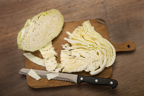 Chopped cabbage - CSTF000019