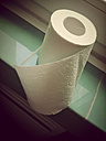 Roll of toilet paper in a bathroom - MYF000199