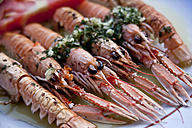Croatia, Brac, Sumartin, Cooked scampi with garlic parsley - DISF000594