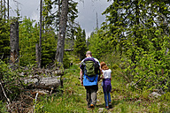 Germany, Bavarian Forest National Park, Father and daughter hiking near Finsterau - LB000584