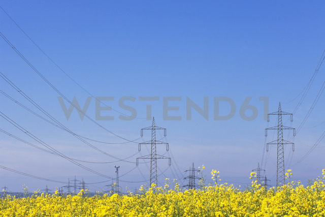 Germany, North Rhine-Westphalia, Pulheim, view to rape fields (Brassica napus) in front of overland high voltage power lines - GW002605