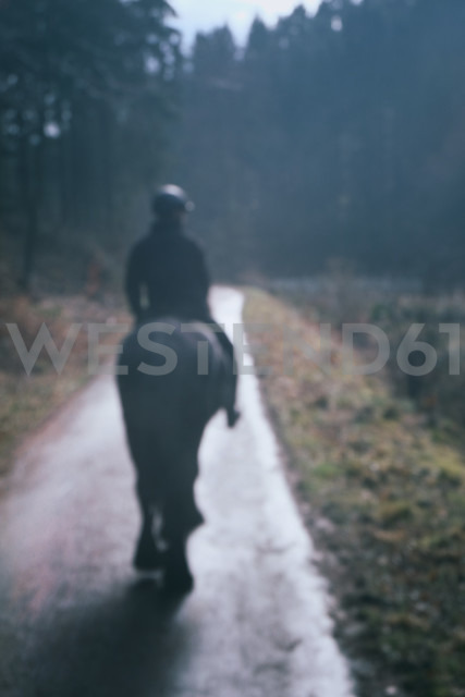 Germany, North Rhine-Westphalia, Bergisches Land, Rhein-Sieg-Kreis, lonely rider on forest track, view from the back - ONF000410