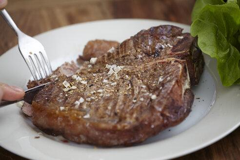 Large steak on plate - FMKF001076