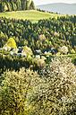 Austria, Styria, Western Styria, Deutschlandsberg, farmhouses on blossoming landscape - HHF004740