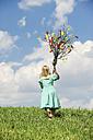 Austria, Salzburg State, Altenmarkt-Zauchensee, little girl with Palmbusch on alpine meadow - HHF004772