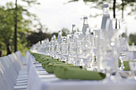 Festive laid table with green napkins and wine glasses - JATF000692