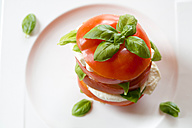 Sliced tomatoe, mozzarella and basil on plate - SARF000316