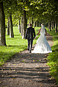 Germany, Rhineland-Palatinate, bridal couple walking hand in hand on a footpath - PA000522