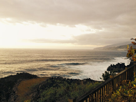 Coastline on the west coast of the Iceland La Palma, Canary Islands, Spain - SEF000608
